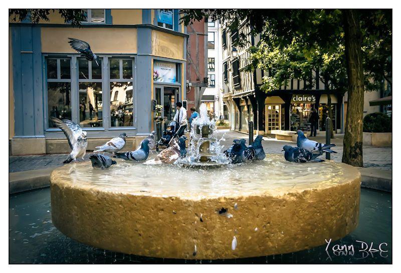 LUMIXDAY 2012 Bourgogne les photos Lumix2012-03
